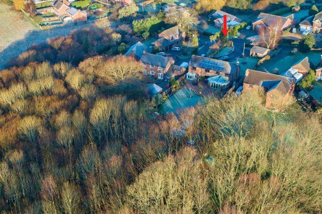Thumbnail Detached house for sale in Twynhams Hill, Shirrell Heath, Southampton