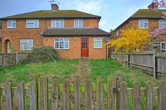 Thumbnail Semi-detached house for sale in Wareside, Ware
