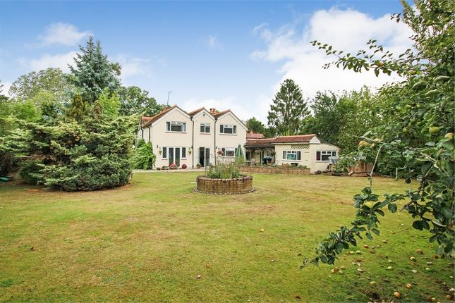 Thumbnail Detached house for sale in Hare Lane, Lingfield, Surrey