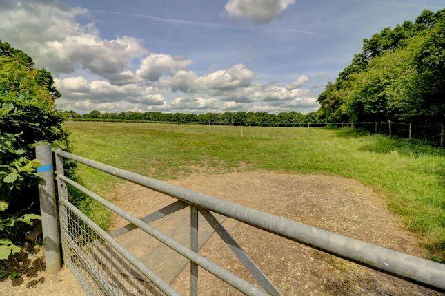 Fields of Somersbury Lane, Ewhurst, Cranleigh GU6