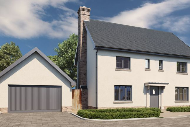 Thumbnail Detached house for sale in Rye Street, Bishop's Stortford