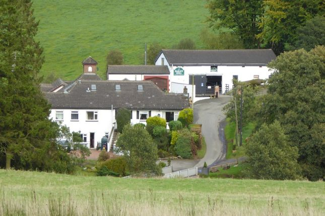 Thumbnail Detached house for sale in Bailey - Newcastleton, Cumbria