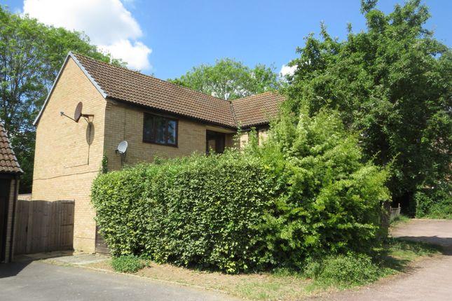 Thumbnail Studio for sale in Sturbridge Close, Lower Earley, Reading