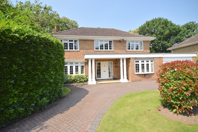 Thumbnail Detached house for sale in Birch Grove, Pyrford, Woking