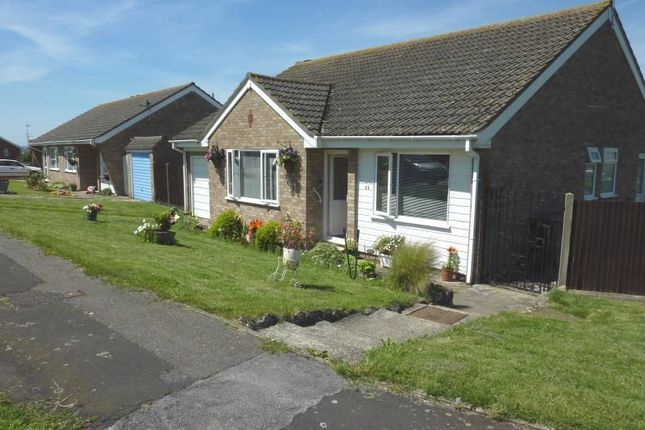 Thumbnail Bungalow to rent in Shamrock Avenue, Seasalter, Whitstable