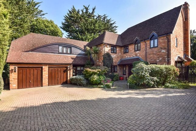 Thumbnail Detached house to rent in Ashton Place, Maidenhead