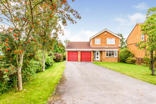 Thumbnail Detached house for sale in Winterdale, Driffield