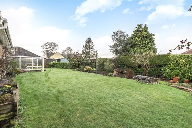 Garden of Woodlands Mead, Marnhull, Sturminster Newton, Dorset DT10