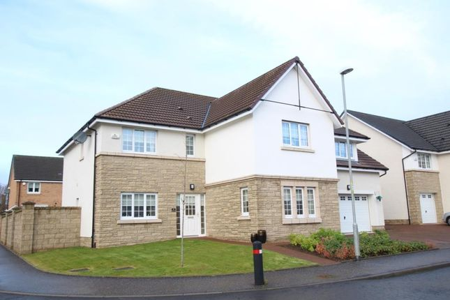 Thumbnail Property for sale in Gadwall Grove, Motherwell