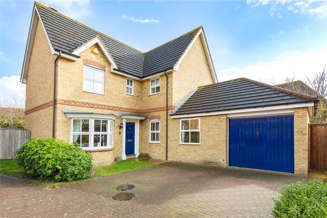 Thumbnail Detached house for sale in Ridgewell Avenue, Chelmsford, Essex
