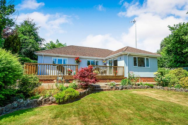 Thumbnail Detached bungalow for sale in Moor Lane, Torquay