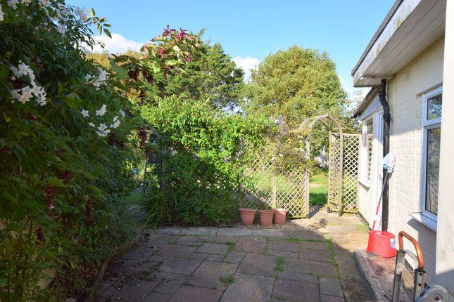 Side Garden of South Close, Pevensey Bay BN24