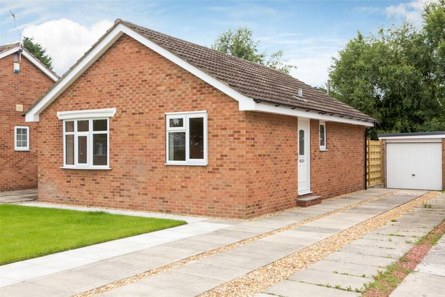 Thumbnail Detached bungalow for sale in Malbys Grove, Copmanthorpe, York
