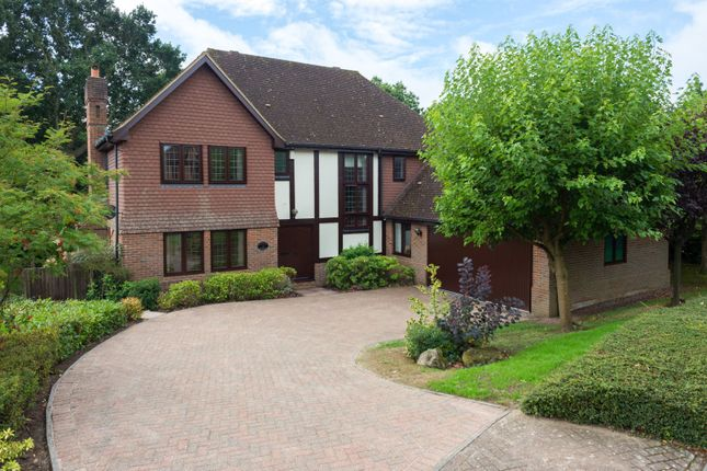 Thumbnail Detached house for sale in Potters Close, Ashford