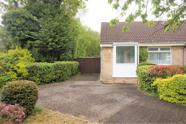 Thumbnail Bungalow for sale in Hollyrood Close, Barry