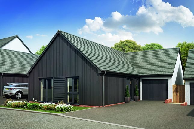 Thumbnail Detached bungalow for sale in Courtfield, Totnes