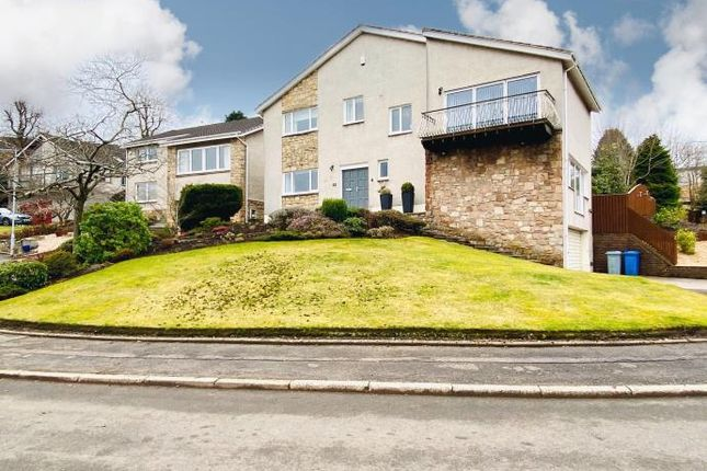 Thumbnail Detached house to rent in Avonside Grove, Hamilton