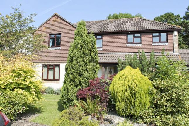 Thumbnail Detached house to rent in Partridge Green, New Milton