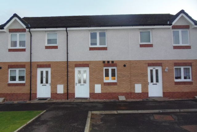 Thumbnail Terraced house to rent in Cyril Place, Paisley, Renfrewshire, 1Gr