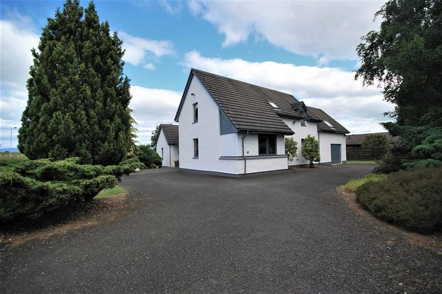 Thumbnail Detached house for sale in Mare Park, Auchterarder