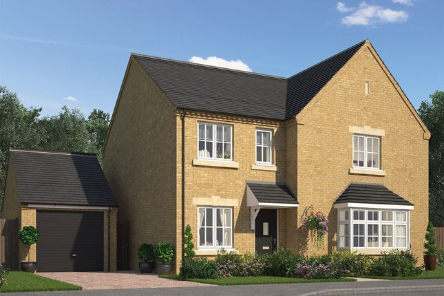 Thumbnail Detached house for sale in Dalesway, Skipton Road, Harrogate