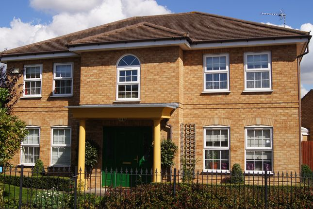 Thumbnail Detached house for sale in Whimbrel Close, Rugby