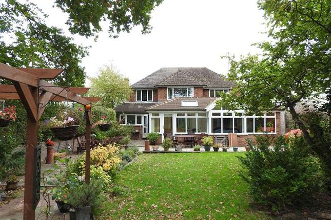 Thumbnail Detached house for sale in Harriotts Lane, Ashtead