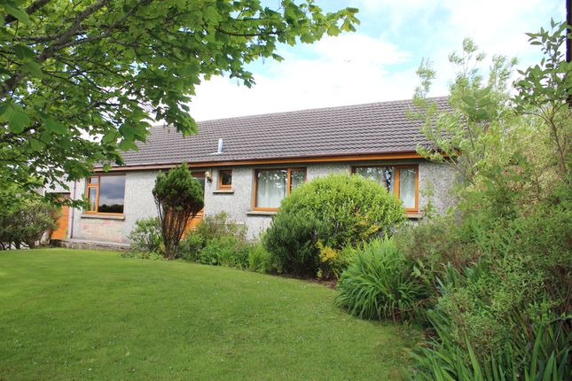 Thumbnail Detached bungalow for sale in Papdale Road, Kirkwall, Orkney