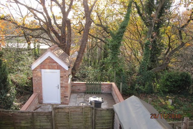 Outside Space With Brick Shed