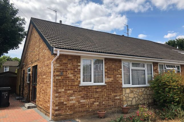 Thumbnail Bungalow to rent in Bladon Close, Northampton