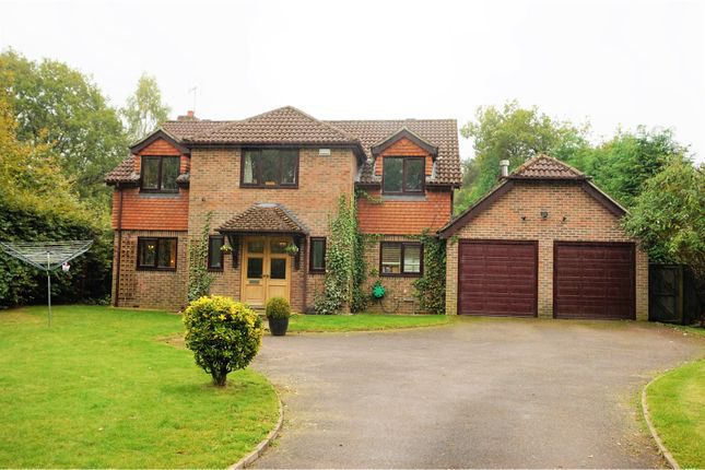 Thumbnail Detached House For Sale In Longmoor Road Liphook