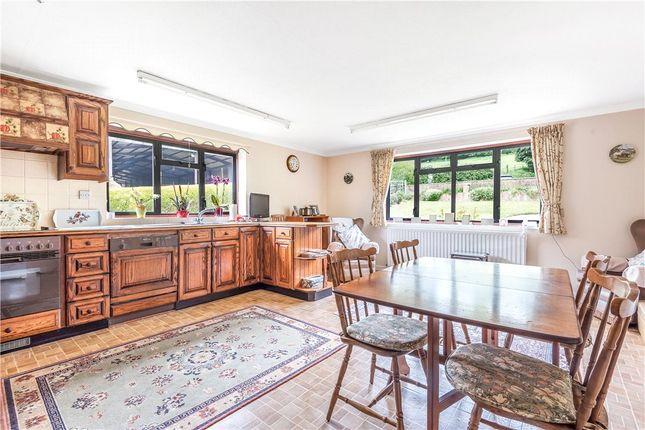 Kitchen of Bratton Seymour, Wincanton, Somerset BA9