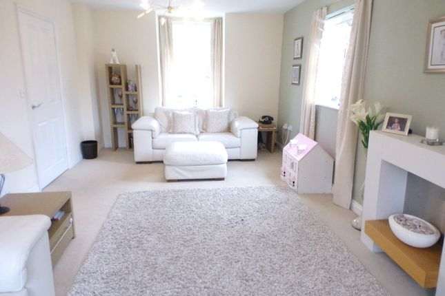 Thumbnail Detached house for sale in Ferndale, South Shields