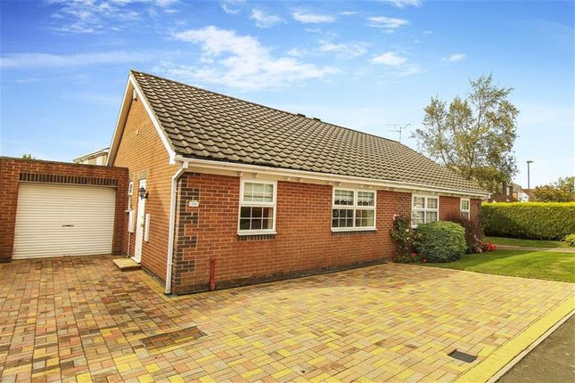 Thumbnail Bungalow to rent in Paddock Hill, Ponteland, Northumberland