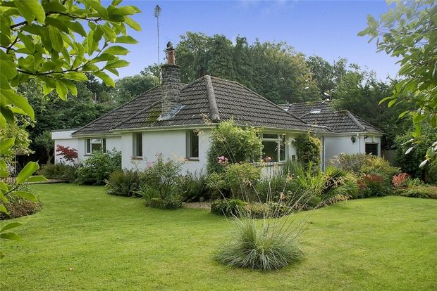 Thumbnail Detached bungalow for sale in Honey Lane, Burley, Ringwood