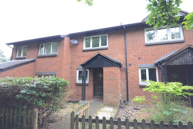 Thumbnail Terraced house to rent in Macbeth Court, Warfield, Bracknell