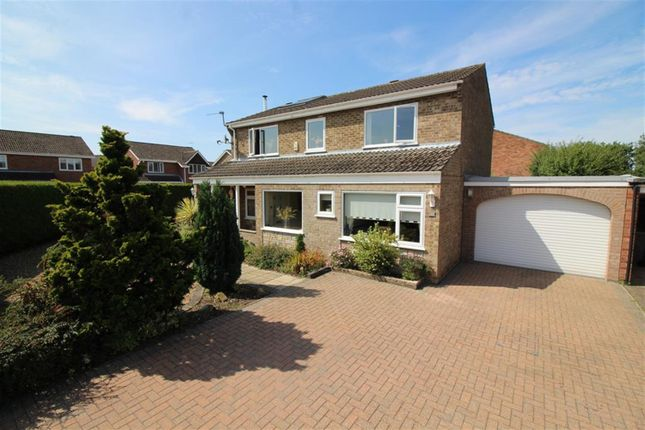 Thumbnail Detached house for sale in Cypress Close, Taverham, Norwich