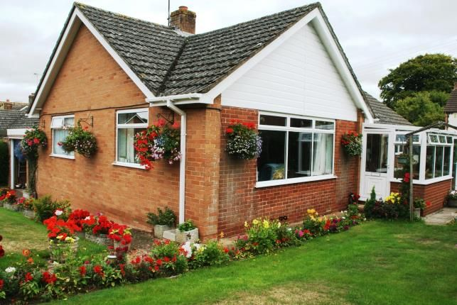 Thumbnail Bungalow for sale in Newton Poppleford, Sidmouth, Devon