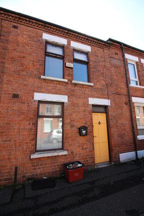 Thumbnail Terraced house to rent in Egeria Street, Belfast