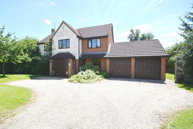 Thumbnail Detached house for sale in Acorn Avenue, Braintree, Essex
