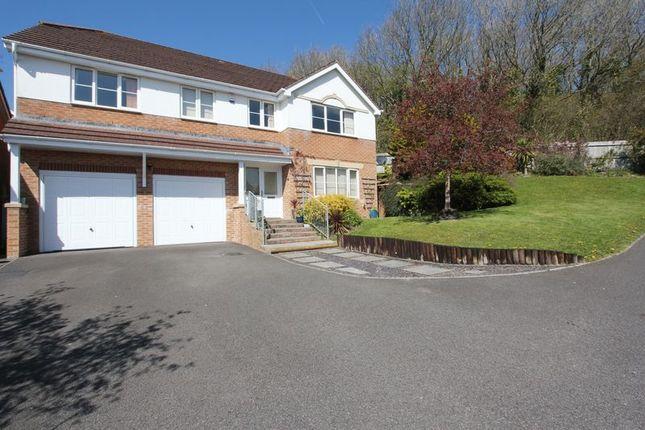 Thumbnail Detached house for sale in Afal Sur, Pencoedtre Village, Barry