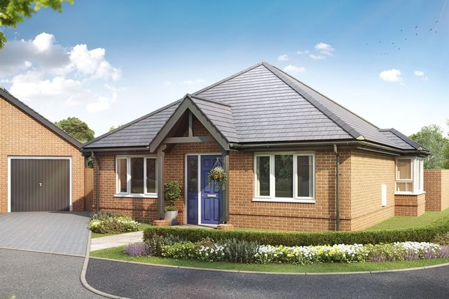 "Thumbnail Bungalow for sale in ""The Anmore"" at Anmore Road, Denmead, Waterlooville"