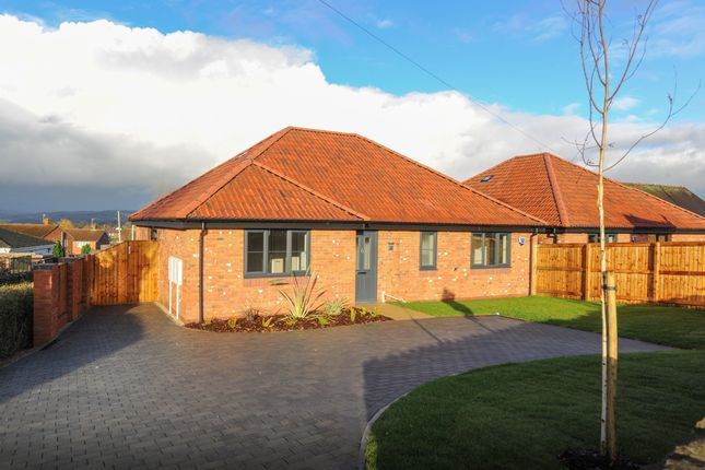 Thumbnail Detached bungalow for sale in The Claydon, Ravensdale, Brimington