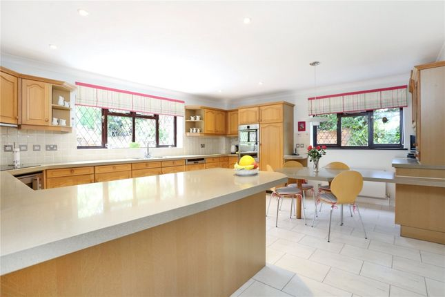 Thumbnail Detached house to rent in Wellhouse Road, Beech, Alton