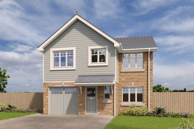 Detached house to rent in The Radleigh, Phase 2, Royal Park, Ramsey