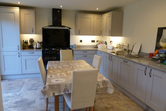 Thumbnail Semi-detached house to rent in Brooklyn, Wrington