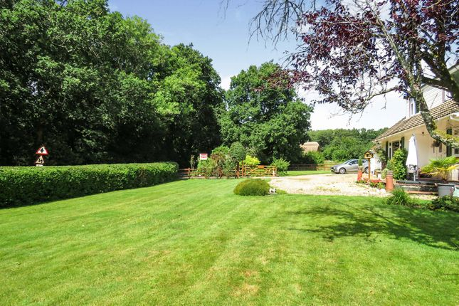 Thumbnail Bungalow for sale in Horton Heath, Horton, Wimborne