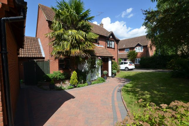 Thumbnail Detached house for sale in Martins Way, Orton Waterville, Peterborough
