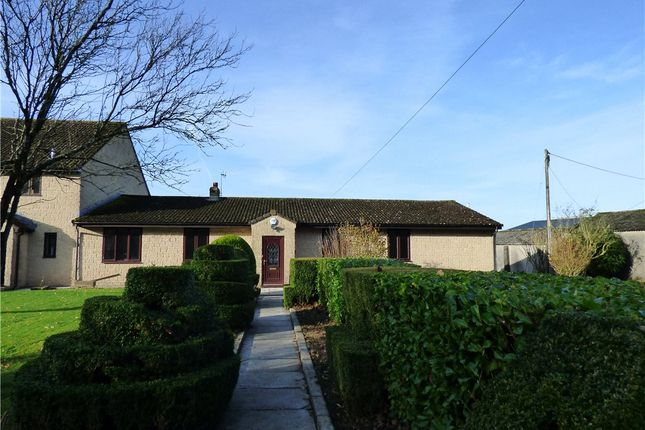 3 bed bungalow to rent in Halstock, Yeovil BA22