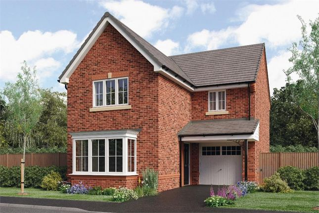 """Thumbnail Detached house for sale in """"Malory"""" at Honeywell Lane, Barnsley"""